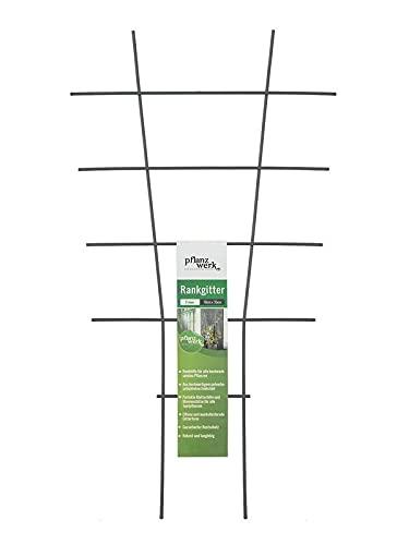Pflanzwerk® Pflanzkübel Rankgitter - 2 Stück - 78x35cm Pflanzen Rankhilfe Blumen Rosen Kletterhilfe *100%...