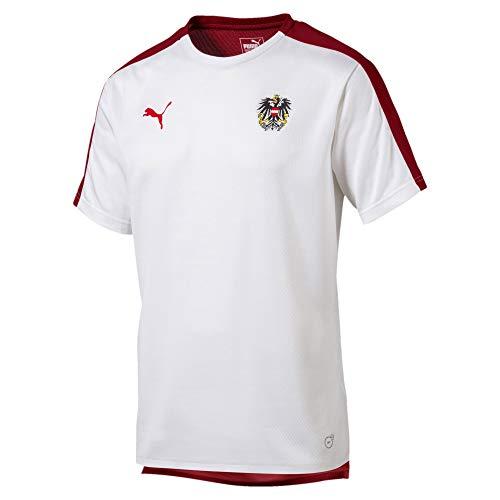 PUMA Österreich Herren Stadium Trikot Puma White-Red Dahlia M