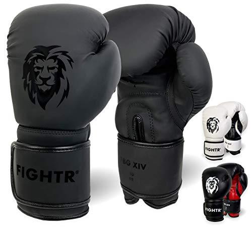 FIGHTR® Boxhandschuhe - ideale Stabilität & Schlagkraft | Punching Handschuhe für Boxen, MMA, Muay Thai,...