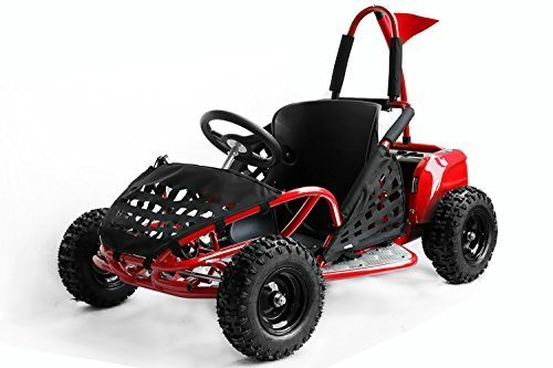 Nitro Motors Buggy GoKid Offroad 6' 1000W 3-Stufen Drossel Kinderbuggy Crossbuggy (Schwarz) 1161502