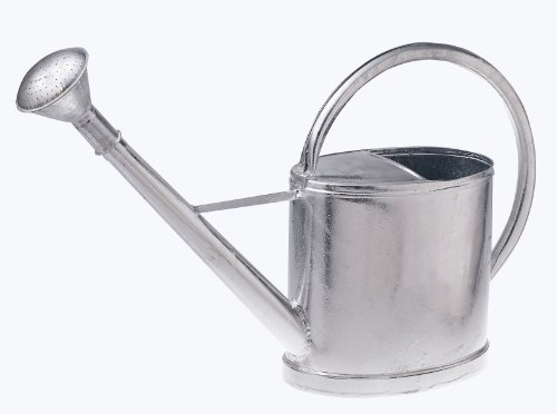 Renner Gießkanne 12 Liter mit Brause aus Stahlblech feuerverzinkt Heritage