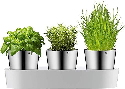 WMF Gourmet Kräutertopf mit Bewässerungssystem 3-teilig, Kräutergarten für die Küche, 36x 12,5x 12,5 cm,...