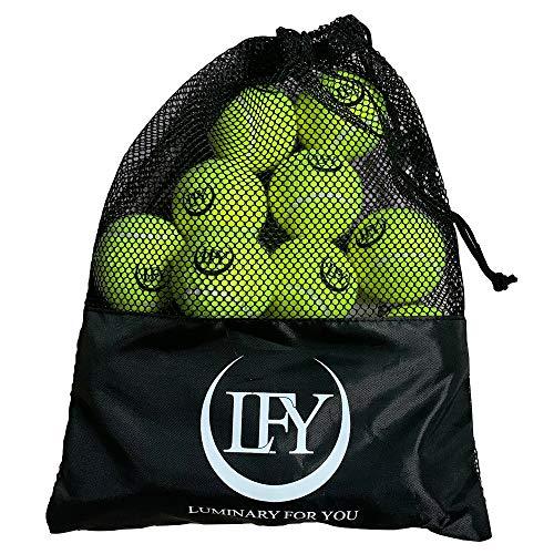 LFY Luminary for you Tennisbälle 15 Stück inklusive Mesh-Tragetasche Tennisbälle perfekt für das Training...