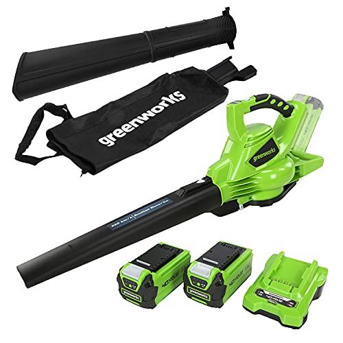 Greenworks Tools 01-0000024227UC GD40BVK2X 24227UC 40 V Laubgebläse und Sauger inklusive 2 Akkus 2Ah und...
