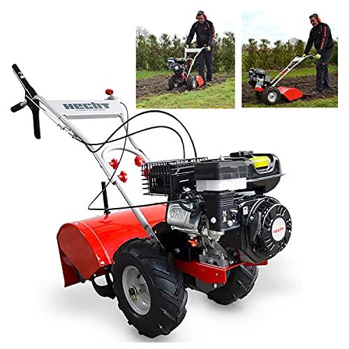 HECHT Benzin-Gartenfräse 750 Motorhacke Kultivator Bodenhacke Bodenfräse Fräse (Motorleistung: 4,3 kW (5,9...