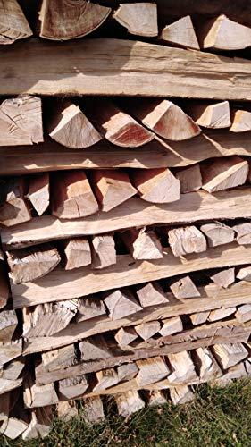 TNNature 30kg getrocknetes Feuerholz | Grillholz | Brennholz aus Buche | Holz aus nachhaltiger deutscher...