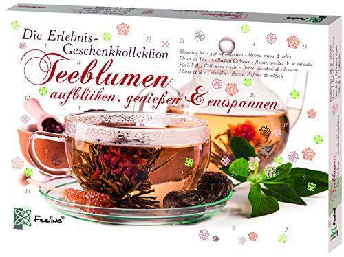 Feelino Teeblumen Geschenk-Kollektion, Adventskalender, Kalender mit 24 verschiedenen Teerosen, einzeln...