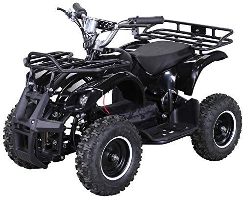 Actionbikes Motors Kinder Elektro Miniquad ATV Torino 1000 Watt 36 Volt - Scheibenbremsen - Umweltfreundlicher...