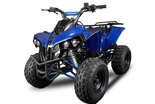 WARRIOR 2012 Edition Quad ATV 125 ccm 1-Zylinder, 4-Takt, luftgekhlt Metallic