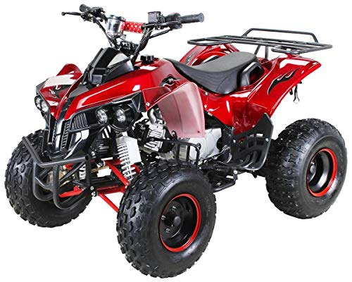 Kinder Quad S-10 125 cc Motor Miniquad Midiquad 125 ccm Warrior (Metallic Rot)
