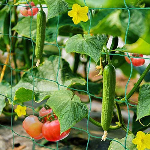 HUTHIM Ranknetz Rankhilfe Garten Tomaten Gurken 2x2.5m, Großer Rastergröße Sehr Passend Netz für...