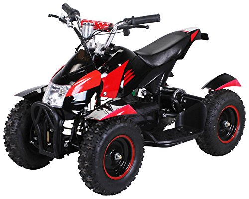 Actionbikes Motors Mini Kinder Elektro Quad ATV Cobra 800 Watt 36 V Pocket Quad - Original Saftey Touch -...