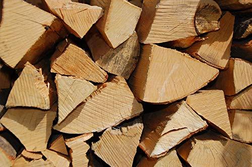 BUCHE Kaminholz, Brennholz 20Kg -gut zu tragen-, Feuerholz, Grillholz, ofenfertig, 25cm Scheitlänge (Buche)